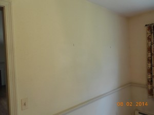 Wall Between the Living Room and Dining Room