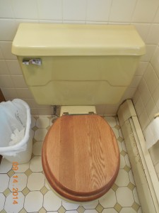 Harvest Gold Toilet